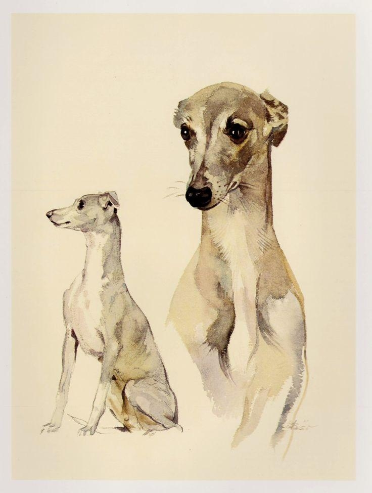 87 Best Wonderful Art I Love Images On Pinterest | Animals, Dog Regarding Italian Greyhound Wall Art (View 2 of 20)
