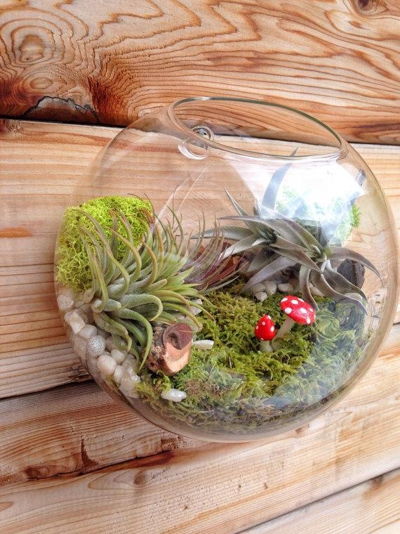 Air Plant Bubble Terrarium,indoor Wall Planter,wall Glass Fish With Air Plant Wall Art (View 15 of 20)