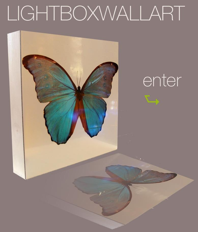 Backlit Outdoor Light Boxes On Winlights | Deluxe Interior Within Wall Light Box Art (View 15 of 20)