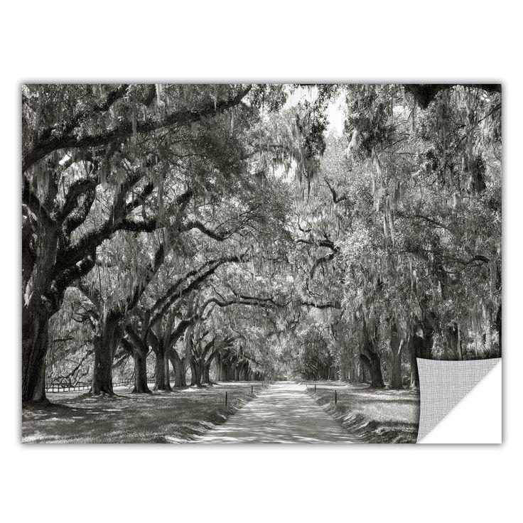 Best 25+ Live Oak Trees Ideas On Pinterest Inside Live Oak Tree Wall Art (View 8 of 20)