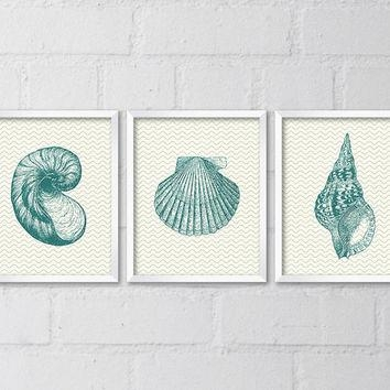 Best Seashell Wall Decor Products On Wanelo Regarding Seashell Prints Wall Art (View 4 of 20)