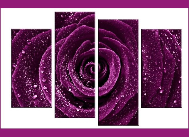Deep Plum / Purple Rose With Water Droplets Dew – 4 Panel Split With Regard To Rose Canvas Wall Art (View 7 of 20)
