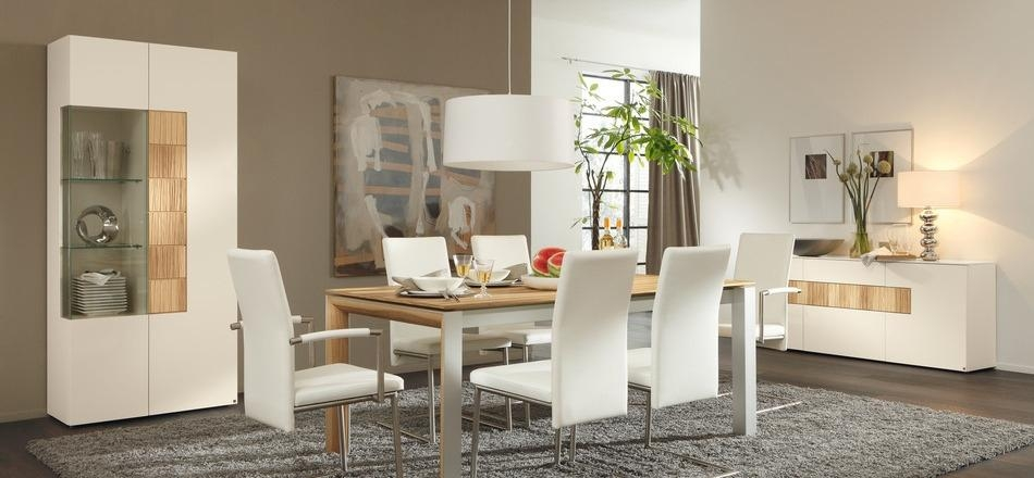 Download Modern Furniture Dining Room | Gen4Congress Within Most Recent Modern Dining Room Furniture (Image 15 of 20)