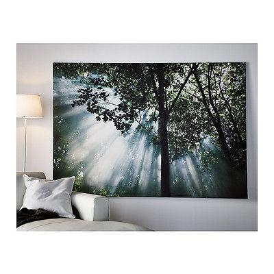 Ikea Large Picture Photo Canvas Wall Art Premiar Bassholma New Na Throughout Ikea Large Wall Art (View 1 of 20)