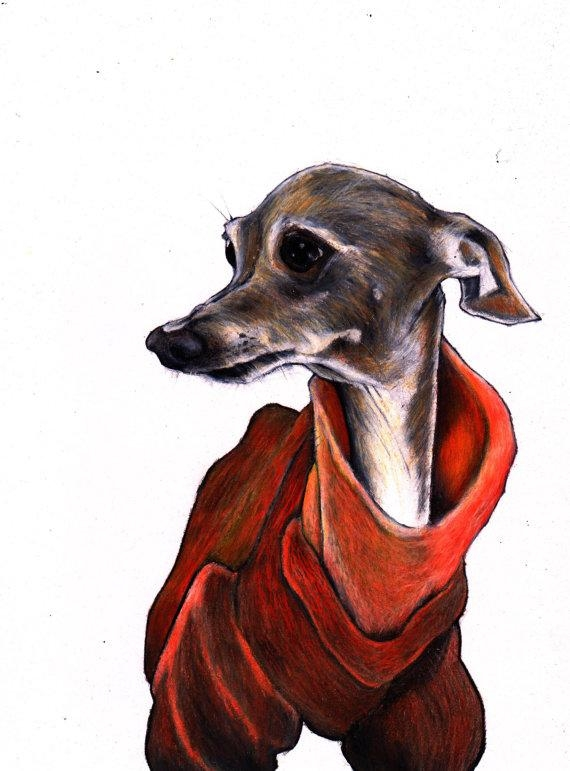 Italian Greyhound Print Iggy Art Print Signed Giclée Print For Italian Greyhound Wall Art (View 7 of 20)
