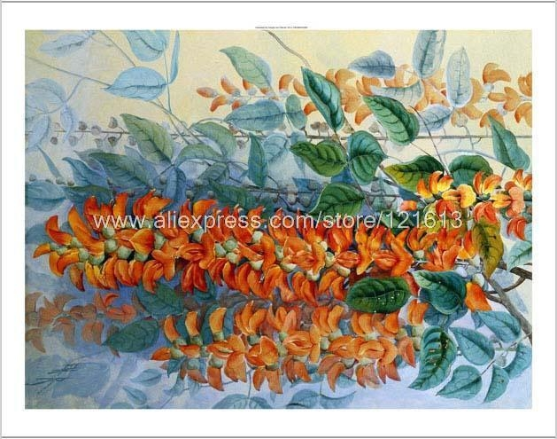 Marian Ellis Rowan Australian Flower Orange Blue Leaves Green Hand With Regard To Orange And Blue Wall Art (Image 14 of 20)