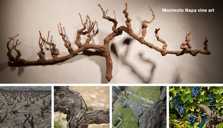 Featured Image of Old Grape Vine Wall Art