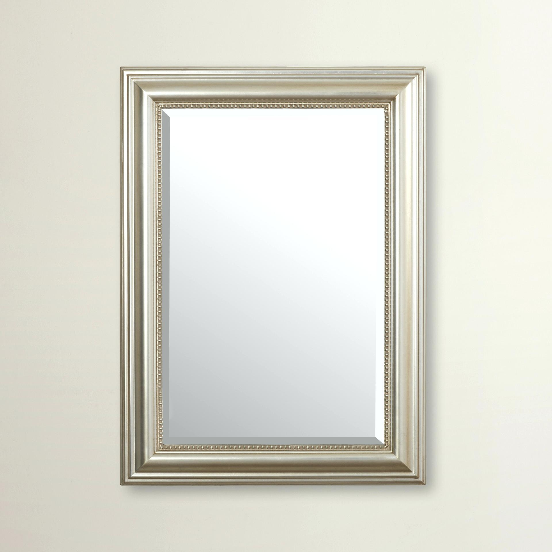 Narrow Wall Mirrors – Amlvideo With Long Rectangular Mirrors (Image 13 of 20)