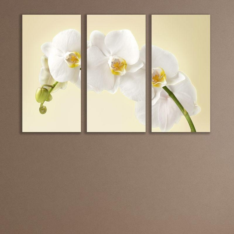 Online Wall Art Decoration Set Of 3 Parts Gentle White Orchid In Wall Art Sets Of  (Image 12 of 20)