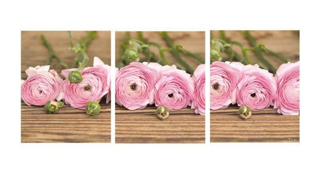 Ranuculus Wall Art Floral Still Life Photography Set Of 3 Prints With 3 Piece Floral Wall Art (View 12 of 20)