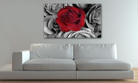 Red Rose B/w | Hundreds Of Floral Canvas Prints At Canvas Ar… | Flickr In Rose Canvas Wall Art (Image 13 of 20)