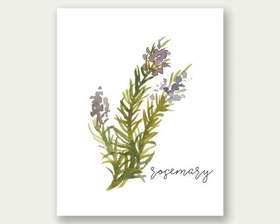 Sale Rosemary Printable Herb Wall Art Herb Print Rosemary Regarding Rose Mary Wall Art (View 19 of 20)