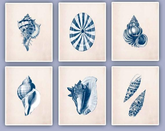Seashell Wall Art For Sale – Framed Seashells Coastal Beach Wall With Regard To Seashell Prints Wall Art (Image 13 of 20)