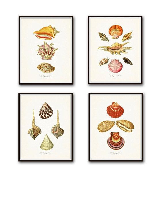 Vintage French Seashell Print Set Giclee Art Prints Throughout Seashell Prints Wall Art (Image 16 of 20)