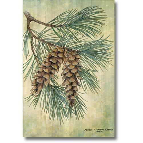 Wall Art Design Ideas: Beautiful Pine Cone Wall Art 69 With With Regard To Pine Cone Wall Art (Image 20 of 20)