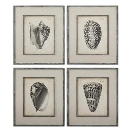 Wall Art Design Ideas : Seashell Prints Wall Art – Amazing Pertaining To Seashell Prints Wall Art (Image 17 of 20)