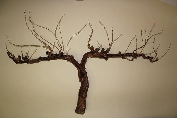 Wall Art ~ Metal Vine Wall Art Grape Vine Wall Art Grape Vine For Old Grape Vine Wall Art (Image 7 of 20)