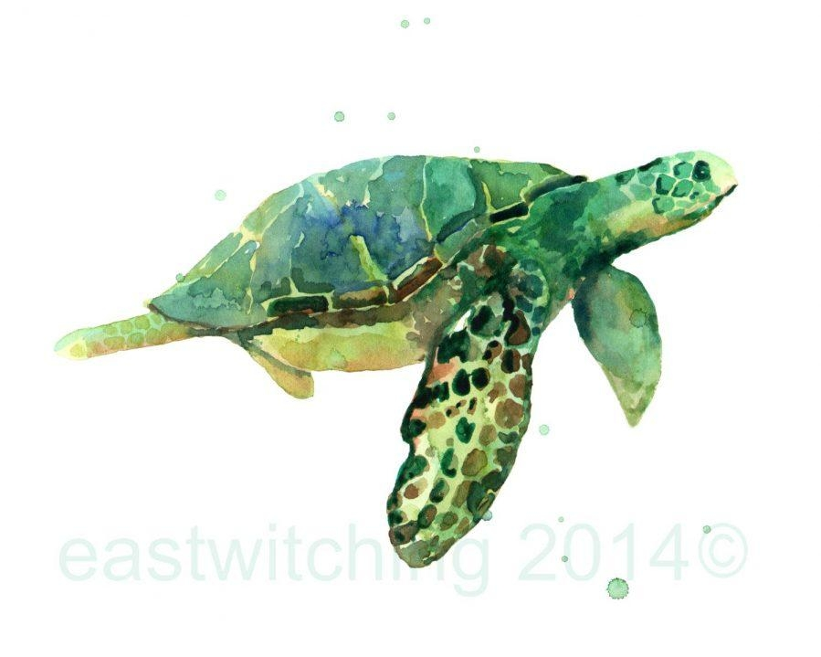 Wall Ideas : Sea Turtle Wall Art Sticker Great Sea Turtle Metal Regarding Outdoor Metal Turtle Wall Art (View 19 of 20)