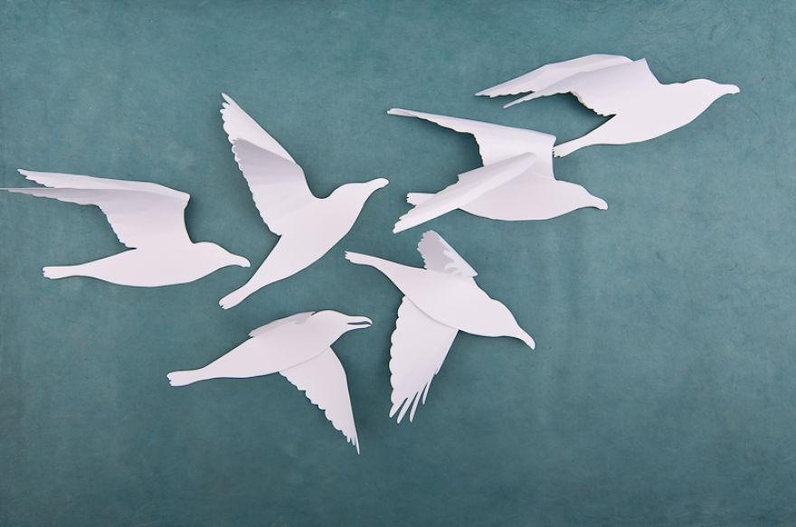 3D Bird Wall Art – Wall Murals Ideas Pertaining To White Birds 3D Wall Art (View 3 of 20)