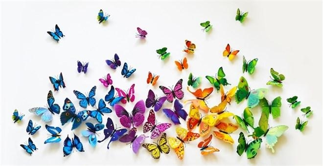 Butterfly 3D Wall Decal Stickers – Create Your Own Beautiful Wall Intended For 3D Butterfly Wall Art (View 13 of 20)