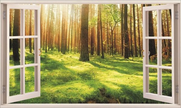 Forest Under Sunshine 3D Window Removable Wall Sticker Art Mural Inside 3D Wall Art Window (View 15 of 20)