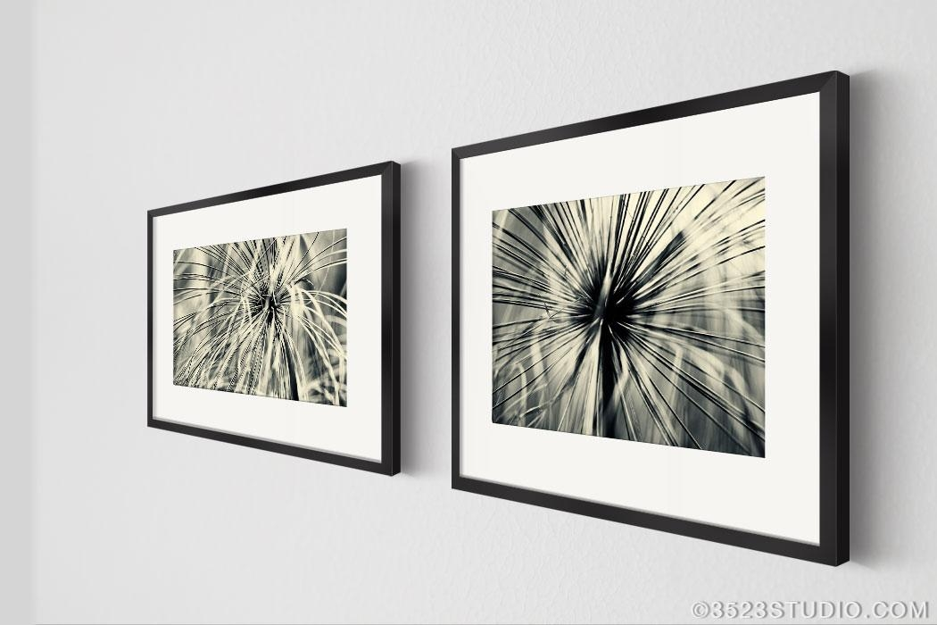 Wall Art: Best Ideas Black And White Photography Wall Art Framed For Framed Abstract Wall Art (Image 20 of 20)