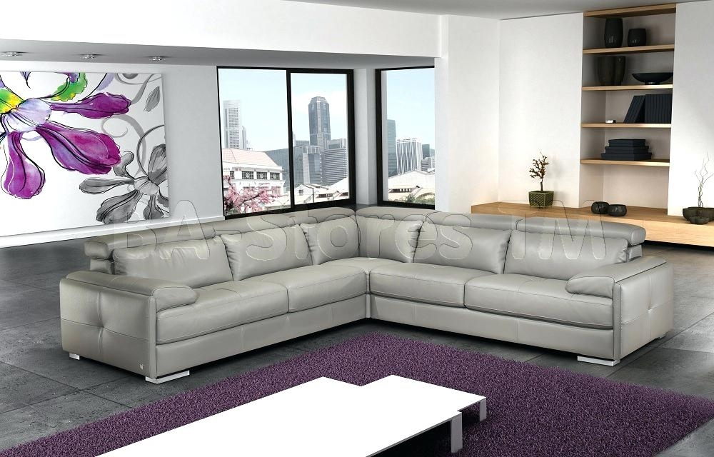 Ash Gray Leather Sectional Sofa Ash Gray Leather Sectional Sofa Within Nyc Sectional Sofas (View 8 of 10)