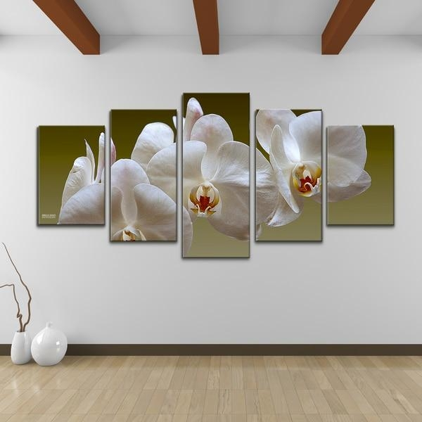 Bruce Bain 'white Orchid' 5 Piece Set Canvas Wall Art – Free Throughout Orchid Canvas Wall Art (Image 7 of 20)