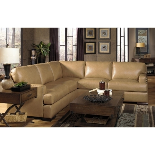 Living Room Sectional Sofas In Knoxville