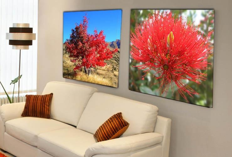 Canvas Prints | Canvas Wall Art | Canvas Art Prints | Bring Your Throughout New Zealand Canvas Wall Art (Image 11 of 20)