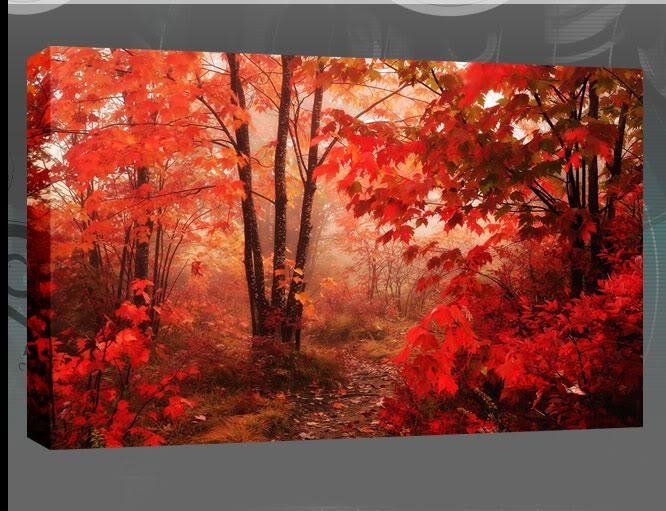 Canvas Wall Art Uk Red Leaves Of The Autumn Forest Single Canvas With Canvas Wall Art In Red (Image 7 of 20)