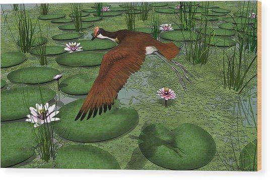 Comb Crested Jacana Digital Artwalter Colvin Inside Jacana Canvas Wall Art (View 17 of 20)