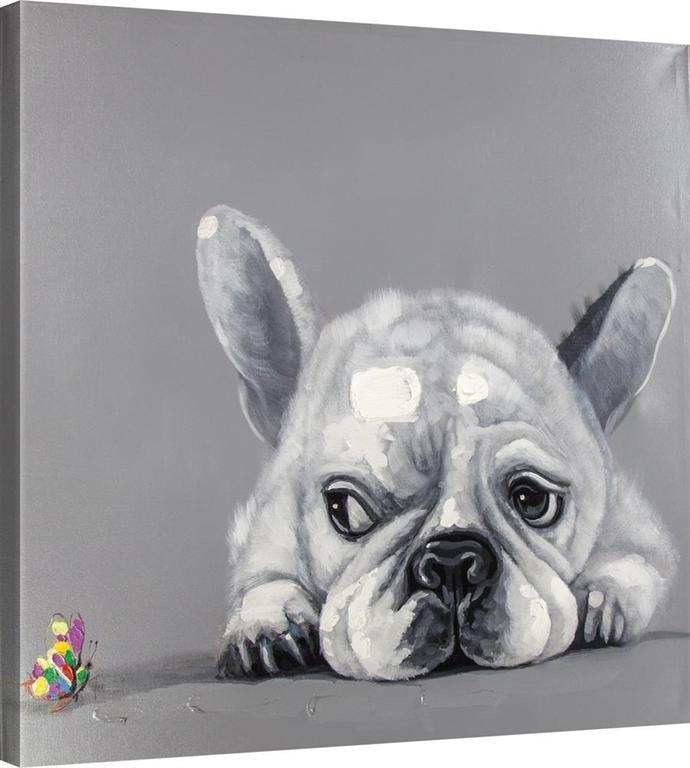Dog And Butterfly Canvas Art Suspicious Eyes Wall Art Puppy 32X32 Within Dogs Canvas Wall Art (Image 8 of 20)