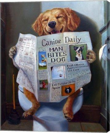 Dog Gone Funny Animal Canvas Wall Art Printjulie Heffernan Inside Dogs Canvas Wall Art (Image 9 of 20)
