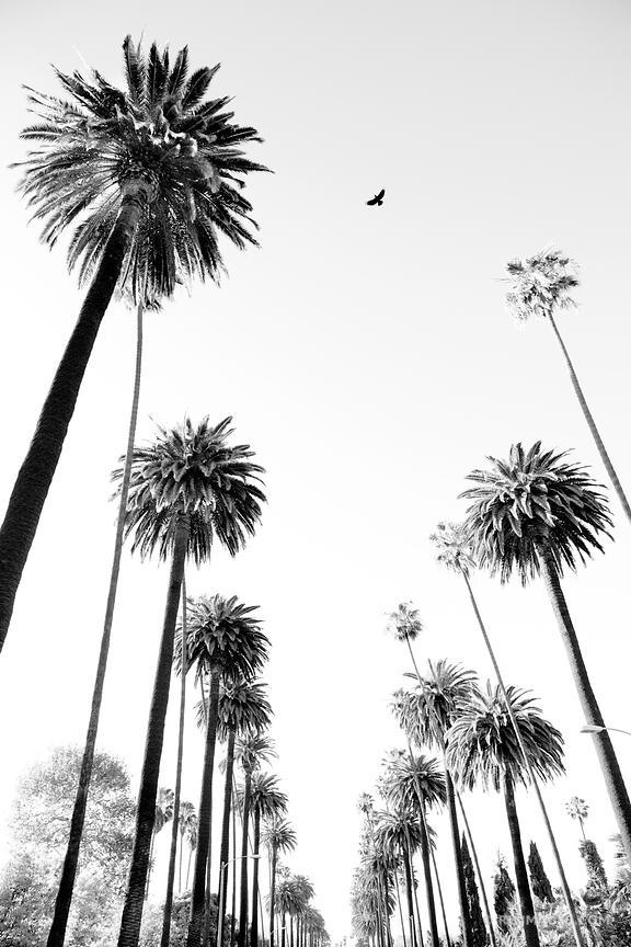 ❏ Fine Art Photography Prints | | | | | Los Angeles California Inside Los Angeles Canvas Wall Art (View 18 of 20)