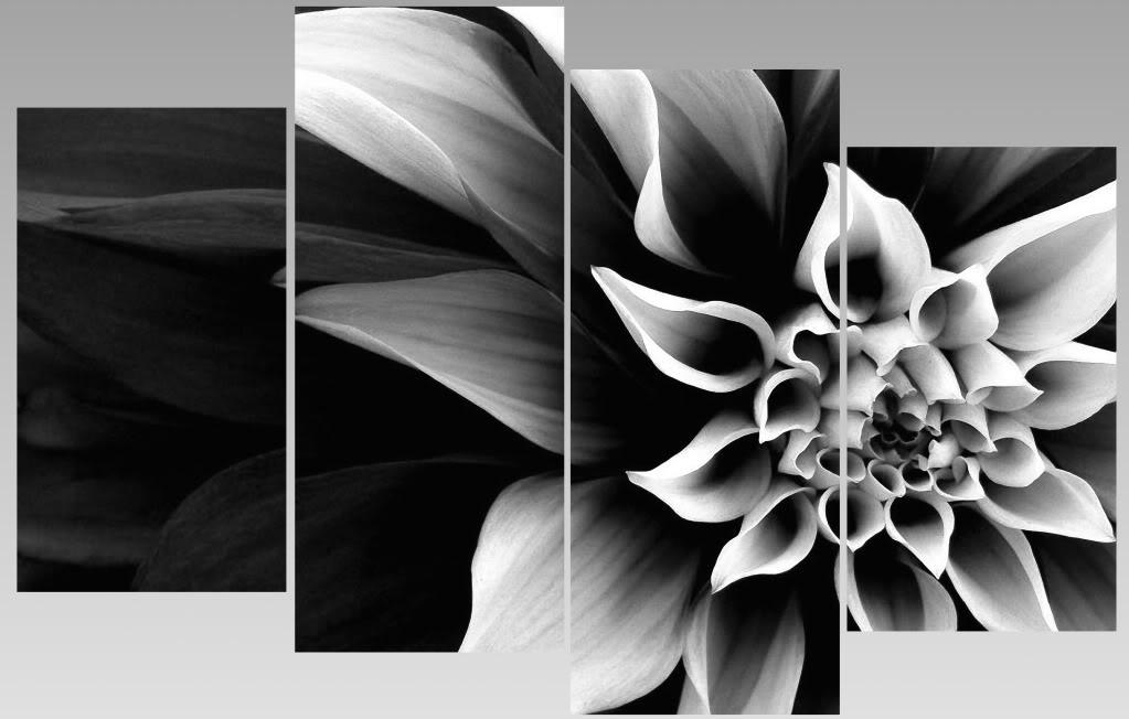 Extra Large Abstract Black & White Flower Canvas Wall Art Multi With Black And White Photography Canvas Wall Art (Photo 11 of 20)