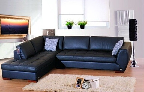 10 Inspirations Sectional Sofas At Buffalo Ny Sofa Ideas
