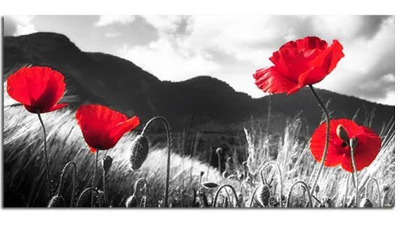 L Est We Forget Poppies Canvas Wall Art Picture 40 Inch 102 Cm Regarding Poppies Canvas Wall Art (Image 11 of 20)