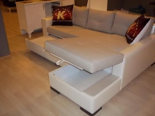 Minimalist Sectional Sofa Bed With Storage Modern For Living Room In Pertaining To Sectional Sofas With Storage (Image 3 of 10)