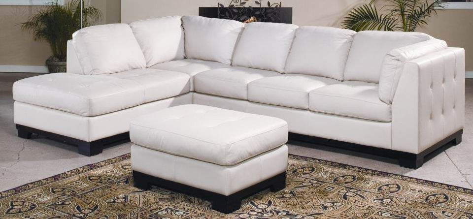 Modern Sofas And Sectional Couches In Ottawala Vie Furniture With Regard To Ottawa Sectional Sofas (View 10 of 10)