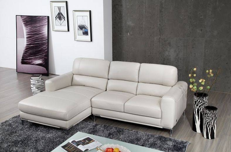 Modern Style Apartment Size Leather Sectional Sofa And Exquisite With Virginia Beach Sectional Sofas (View 7 of 10)