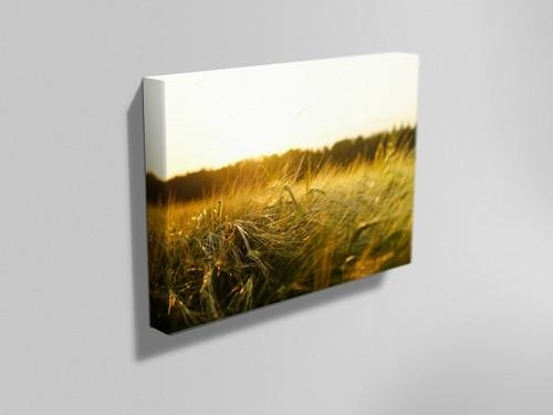 Personalised Canvas Printing | Nottingham – Instaprint Regarding Nottingham Canvas Wall Art (View 6 of 20)