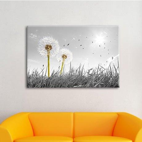 Pixxprint Dandelions In A Meadow Wall Art On Canvas & Reviews With Regard To Dandelion Canvas Wall Art (Image 14 of 20)