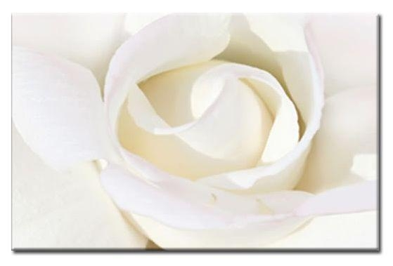 Rose Canvas Wall Art 30X20 A1 76X52Cm Intended For Roses Canvas Wall Art (View 5 of 20)