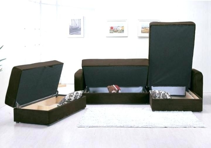Sectional Couch With Storage – Sgmun (View 6 of 10)