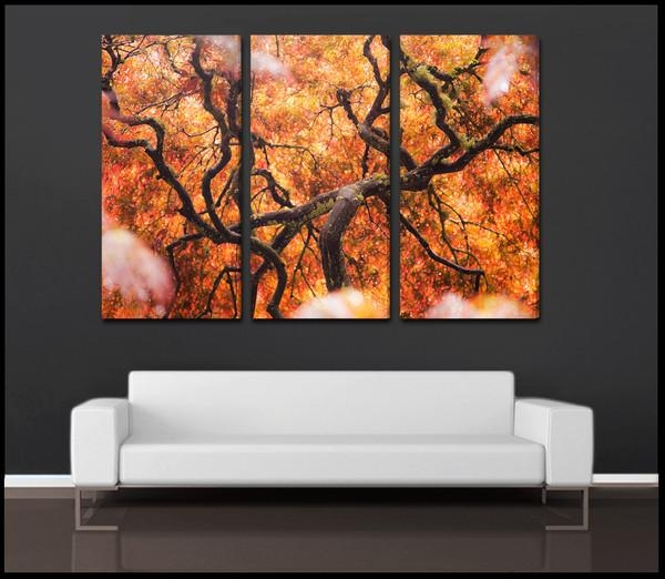 """Tree Of Color"""" Abstract Nature 3 Piece Fine Art Canvas Wall With Abstract Nature Canvas Wall Art (View 2 of 20)"""