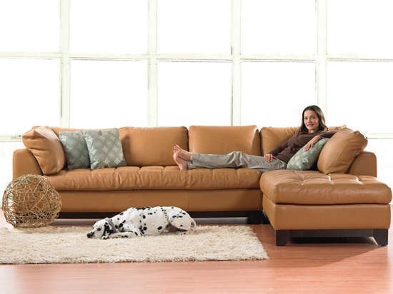 Valenza Chaise Sectional From Plummers; $4699 For Leather But Should With Dania Sectional Sofas (Photo 4 of 10)