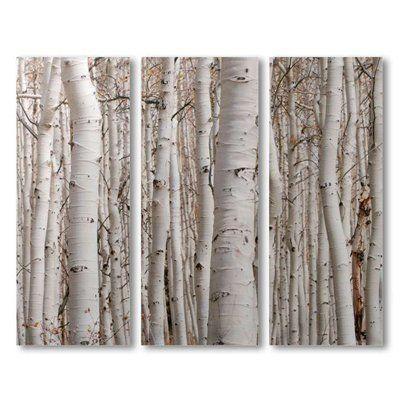 Wall Art Designs: Beautiful Birch Tree Wall Art, Birch Tree Wall Within Birch Trees Canvas Wall Art (Photo 4 of 20)