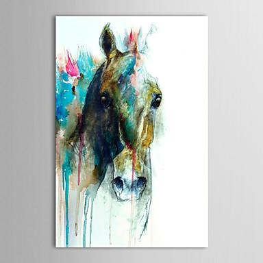 Wall Art Designs: Cheap Framed Wall Art Animal Abstract Horse Head Throughout Abstract Horse Wall Art (View 13 of 20)