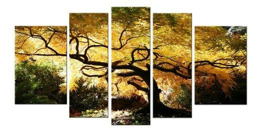 Wall Art Designs: Five Piece Canvas Wall Art Maple Tree Nature Regarding Nature Canvas Wall Art (Image 17 of 20)